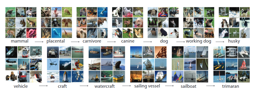 An example of images from the ImageNet hierarchy (<a href='http://www.image-net.org/papers/imagenet_cvpr09.pdf'>Source</a>)